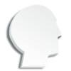 Medium Head die virtual