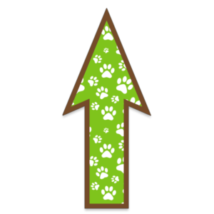FloorWallStickers Fun Product Images Green Paws
