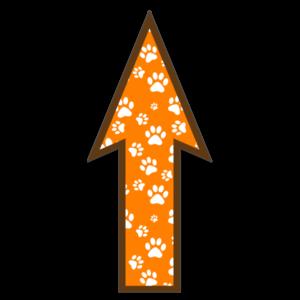 FloorWallStickers Fun Product Images Orange Paws