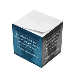 Teddy Roosevelt Do What You Can With What You Have Sticky Note Cubes